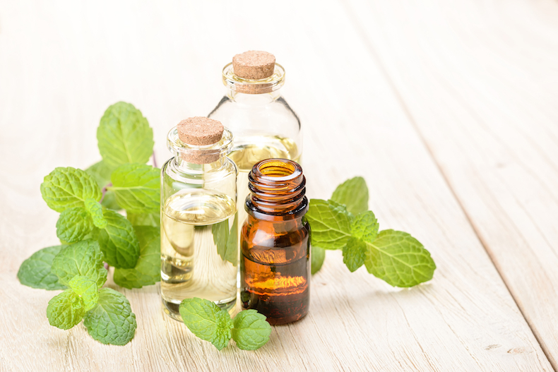 Fresh mint and essential oil